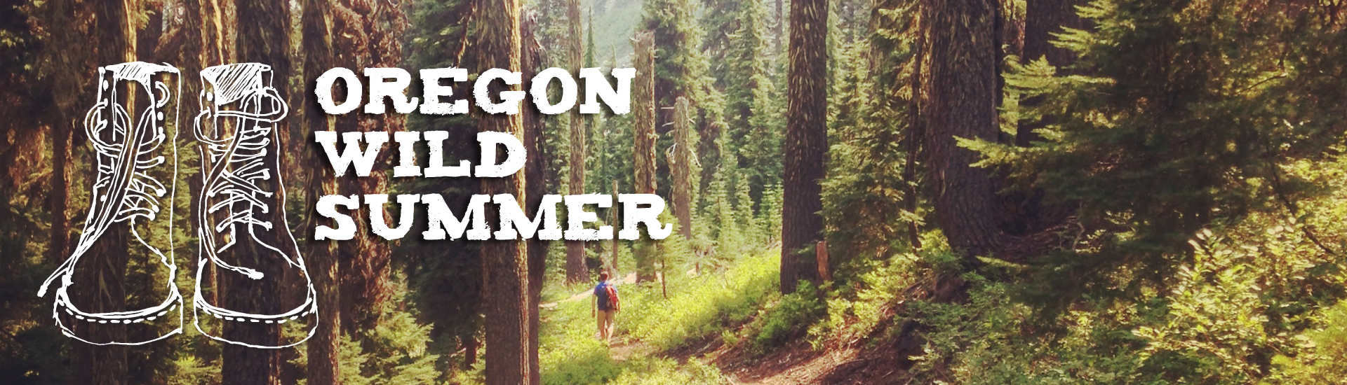 Oregon Wild Summer (Sky Lakes Wilderness by Marielle Cowdin)