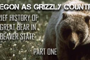 A Brief History of the Great Bear in the Beaver State