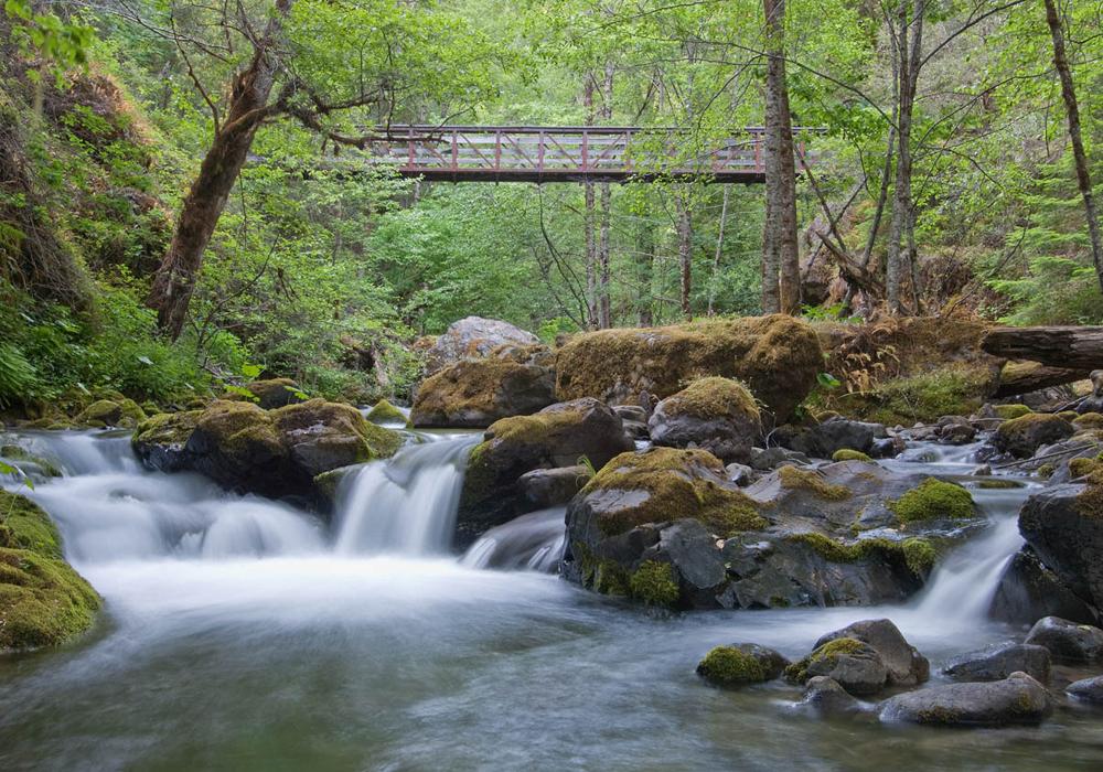 The Oregon Wildlands Act   Oregon Wild
