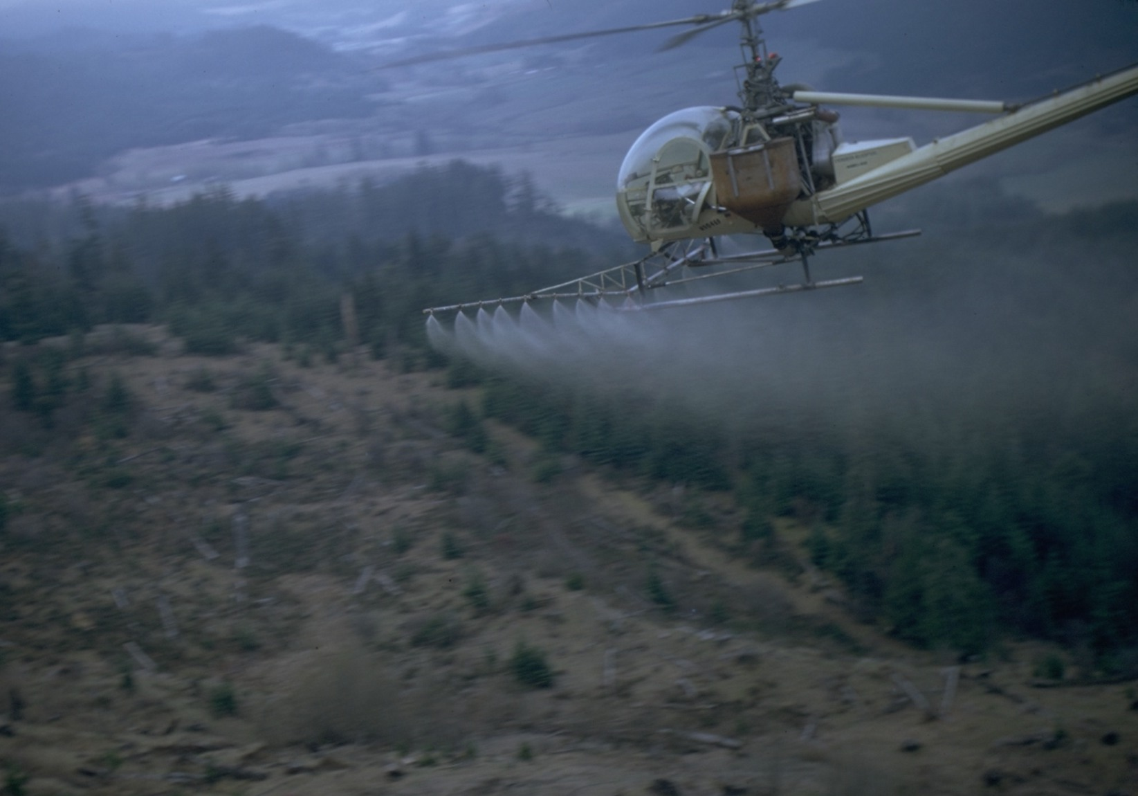 A helicopter sprays herbicides over a clearcut.