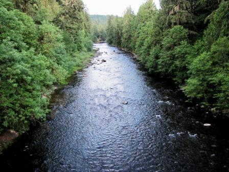 Molalla River winds through tree-lined shores