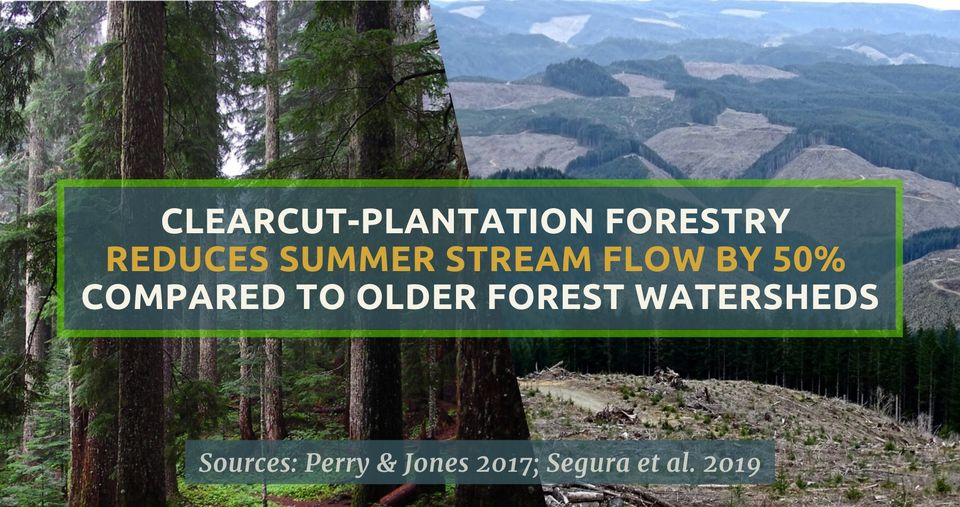Defending Forest Waters for Inland Communities