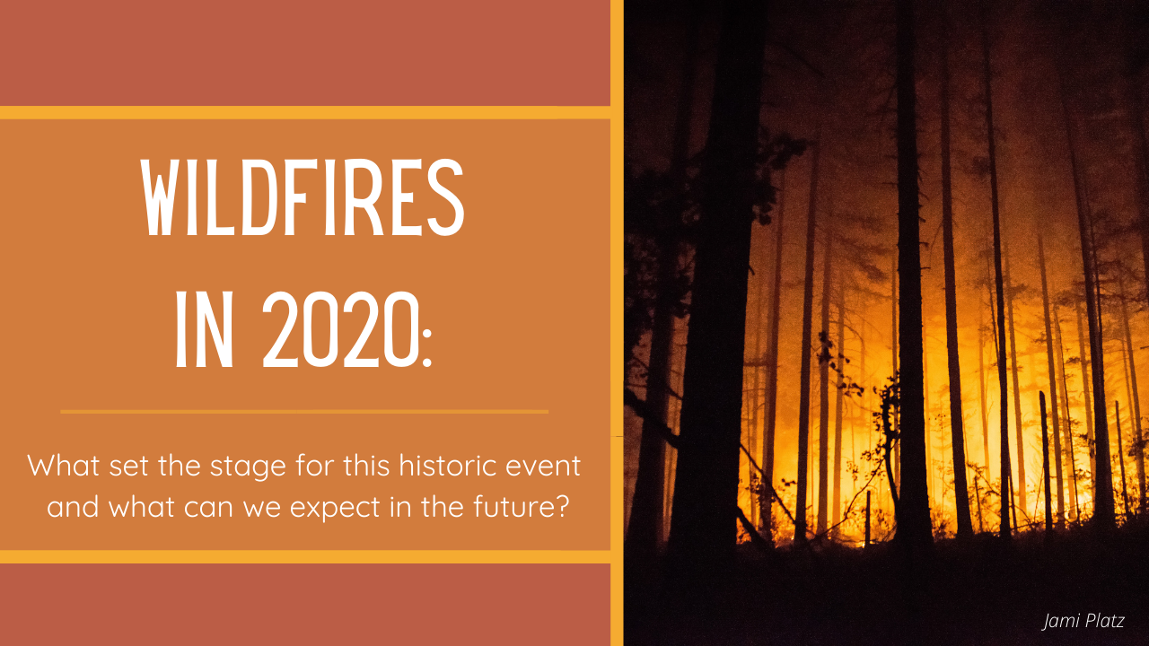 Wildfires in 2020
