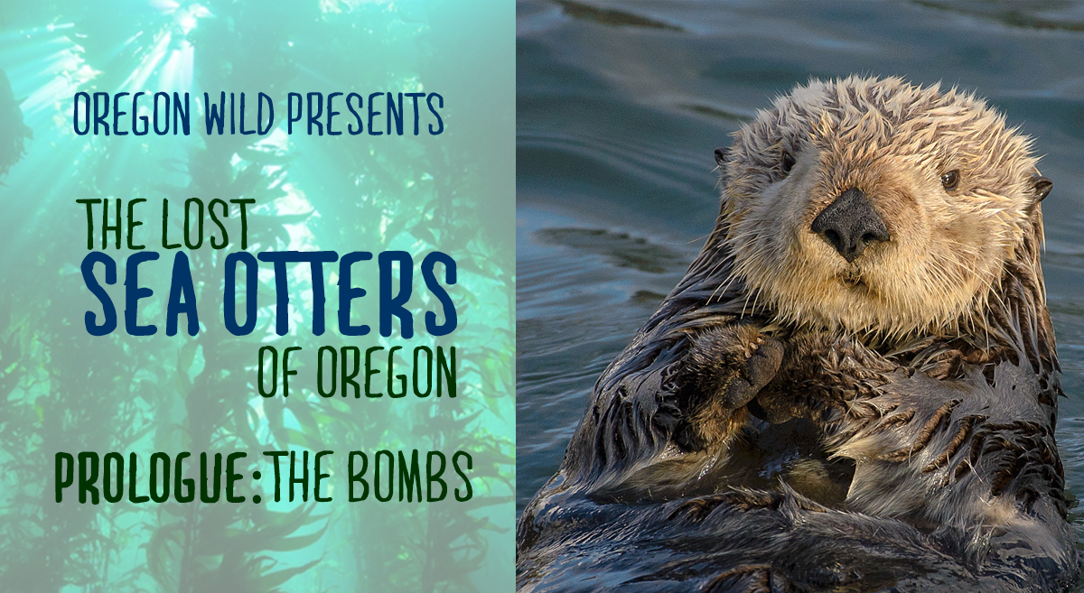 The Lost Sea Otters of Oregon: Prologue