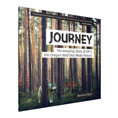 Journey One Tale Two Books