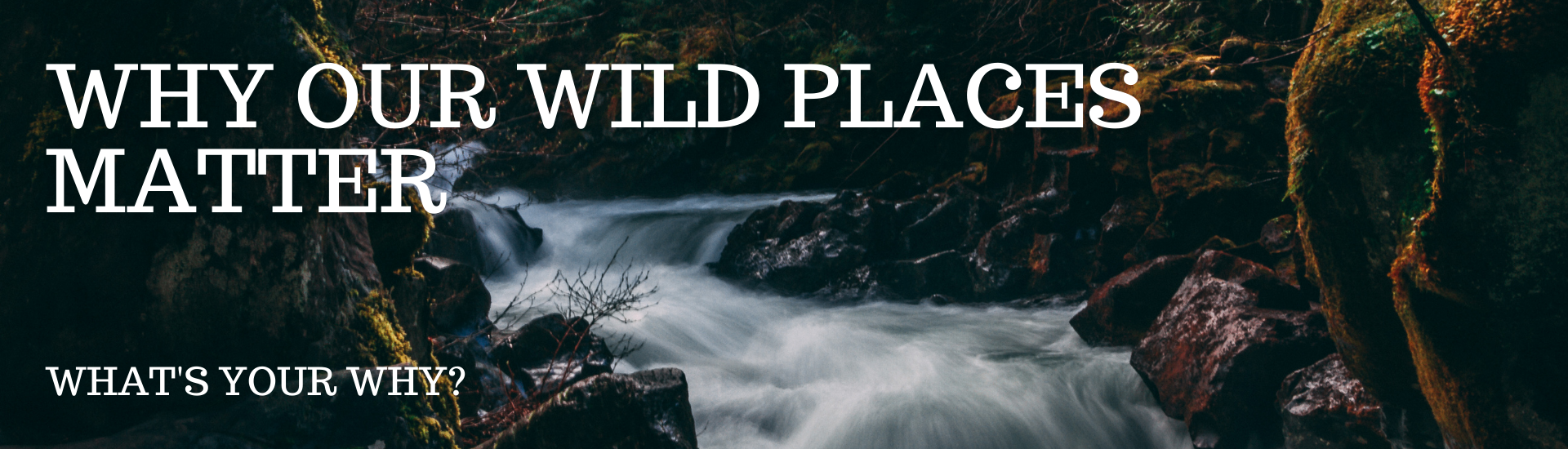 Why Wild Places Matter to You text over a flowing stream