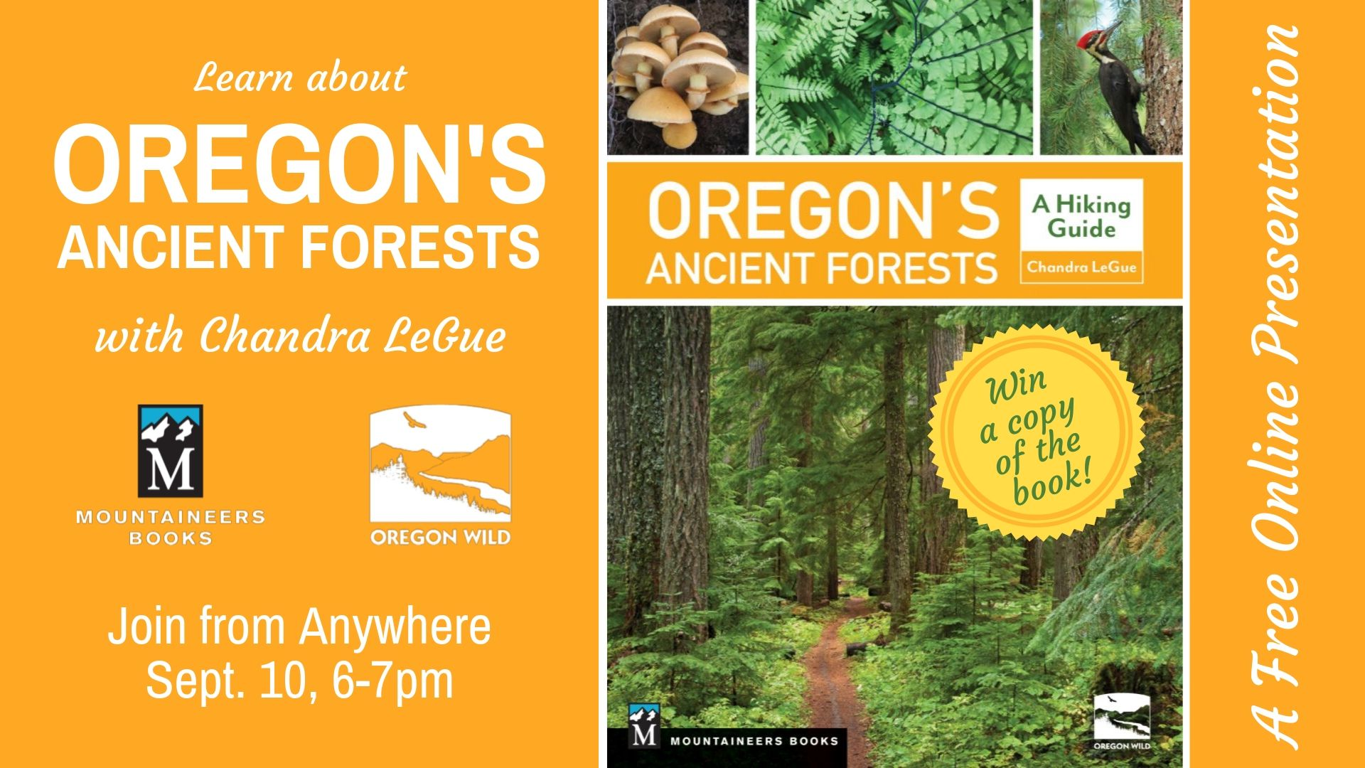 Ancient Forests webinar