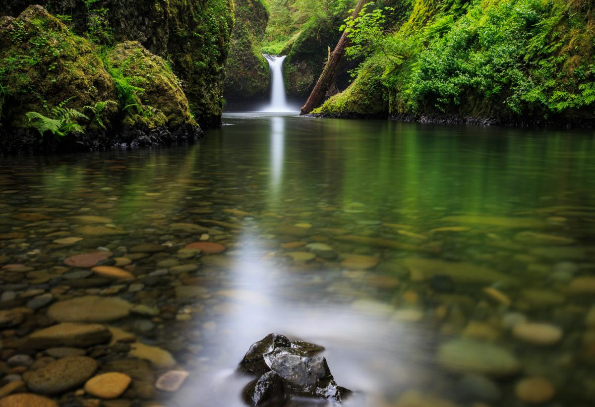 eagle creek to punchbowl falls | oregon wild