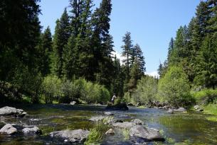 Deep Creek, in the Ochoco N.F., is an important (but unprotected) creek that qualifies for Wild & Scenic River protections.