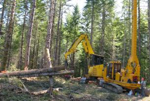 Logging operation on the Siuslaw National Forest