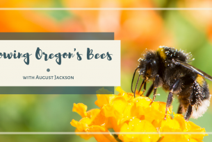 Knowing Oregon's Bees