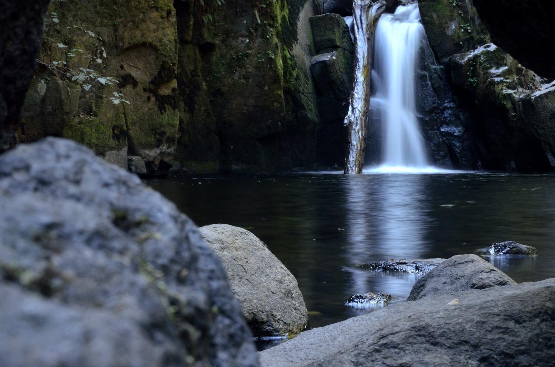 Sweet Creek Falls (Marielle Cowdin)